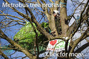 Metrobus tree protest photos in Bristol